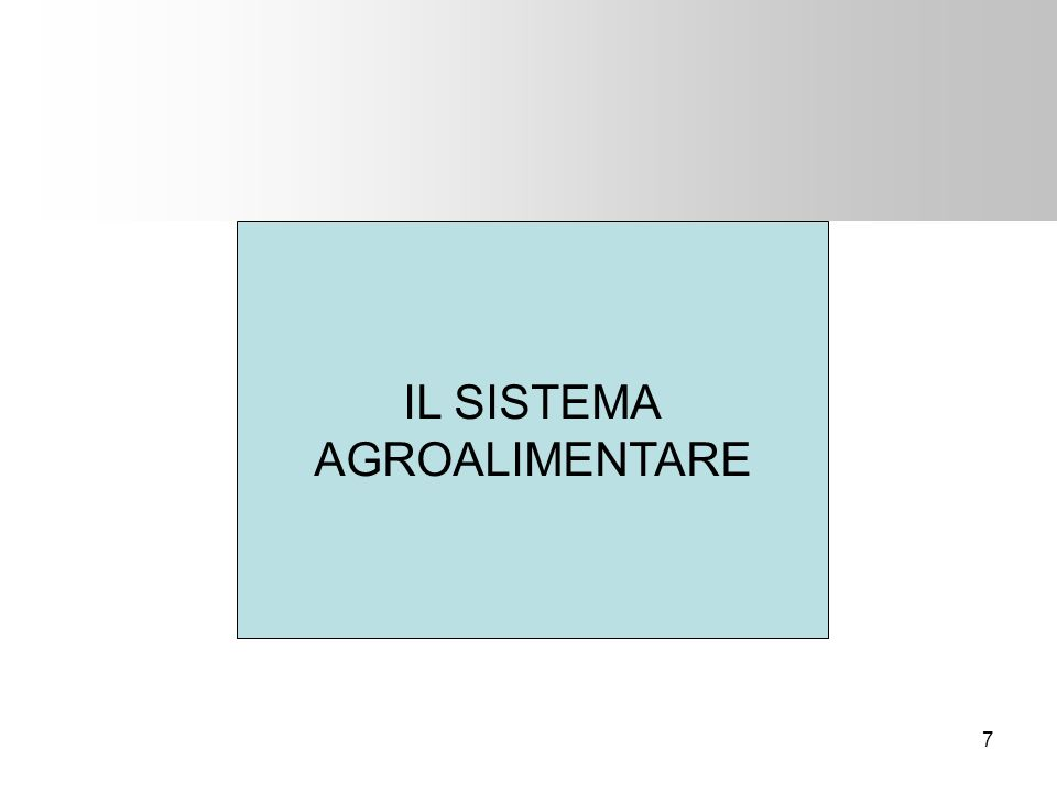 18 OCCUPAZIONE Nel 2006, il numero complessivo degli occupati è cresciuto dell1,6% in Italia In controtendenza con il calo che si registrava dal 2002, nel comparto agricolo si è registrato un aumento delloccupazione pari allo 0,6%: –+3,1% il lavoro dipendente –-0,8% il lavoro indipendente Il 69,2% degli occupati in agricoltura è di sesso maschile Fonte: ISTAT e INEA