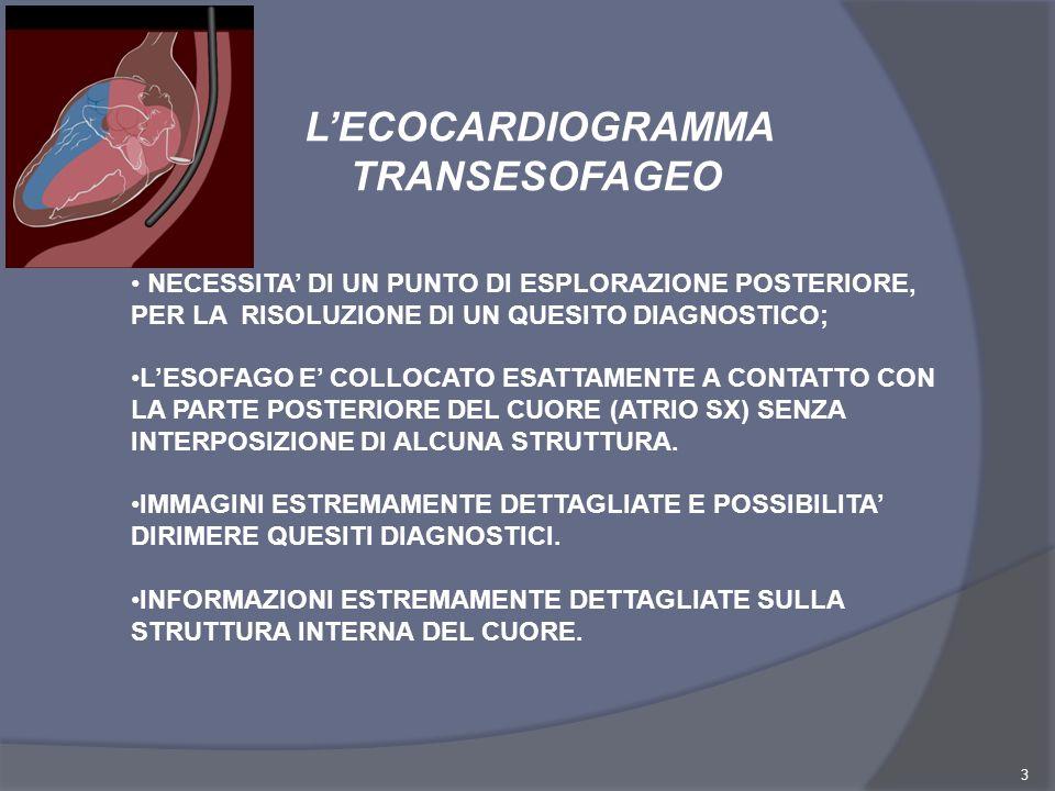 3 LECOCARDIOGRAMMA TRANSESOFAGEO NECESSITA DI UN PUNTO DI ESPLORAZIONE POSTERIORE, PER LA RISOLUZIONE DI UN QUESITO DIAGNOSTICO; LESOFAGO E COLLOCATO