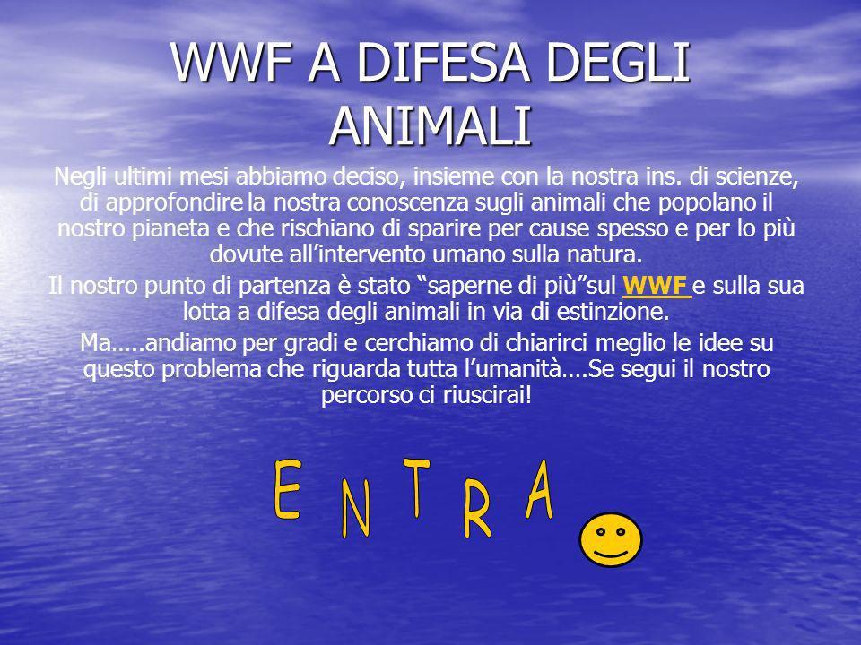 WWF A DIFESA DEGLI ANIMALI Negli ultimi mesi abbiamo deciso, insieme con la nostra ins.