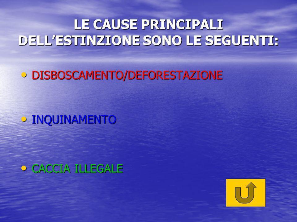 LE CAUSE PRINCIPALI DELLESTINZIONE SONO LE SEGUENTI: DISBOSCAMENTO/DEFORESTAZIONE DISBOSCAMENTO/DEFORESTAZIONE INQUINAMENTO INQUINAMENTO CACCIA ILLEGALE CACCIA ILLEGALE