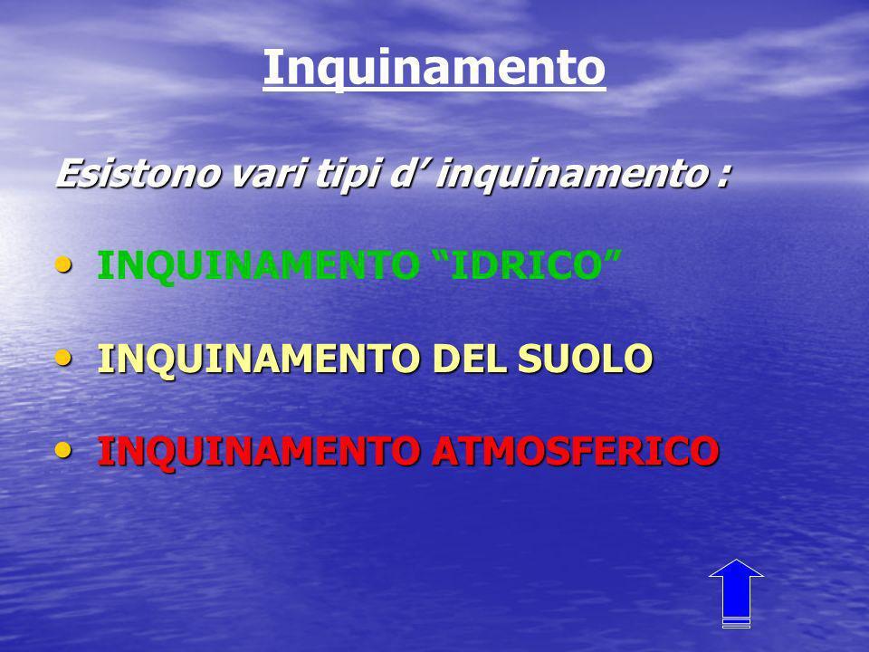 Inquinamento Esistono vari tipi d inquinamento : INQUINAMENTO IDRICO INQUINAMENTO DEL SUOLO INQUINAMENTO DEL SUOLO INQUINAMENTO ATMOSFERICO INQUINAMENTO ATMOSFERICO