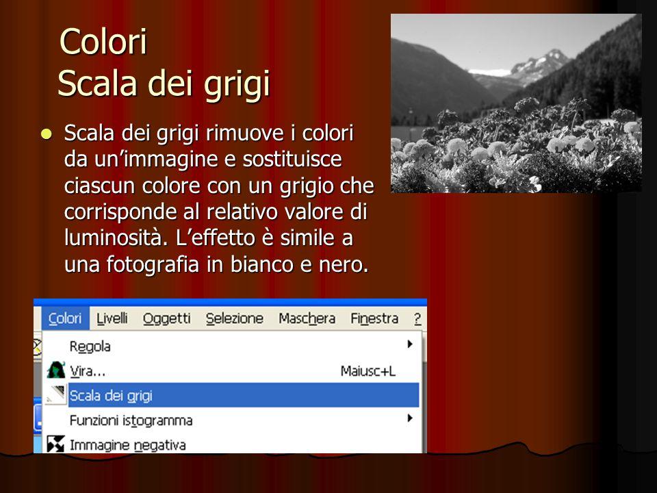 Colori ---------------- Scala dei grigi -------------- Scala dei grigi rimuove i colori da unimmagine e sostituisce ciascun colore con un grigio che c