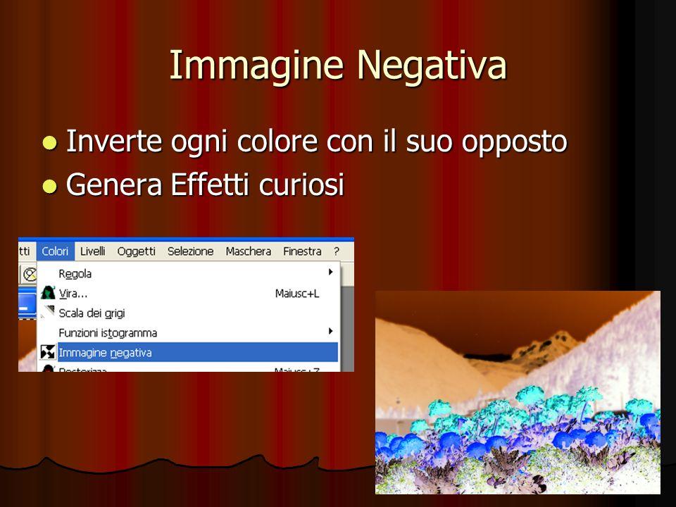 Immagine Negativa Inverte ogni colore con il suo opposto Inverte ogni colore con il suo opposto Genera Effetti curiosi Genera Effetti curiosi