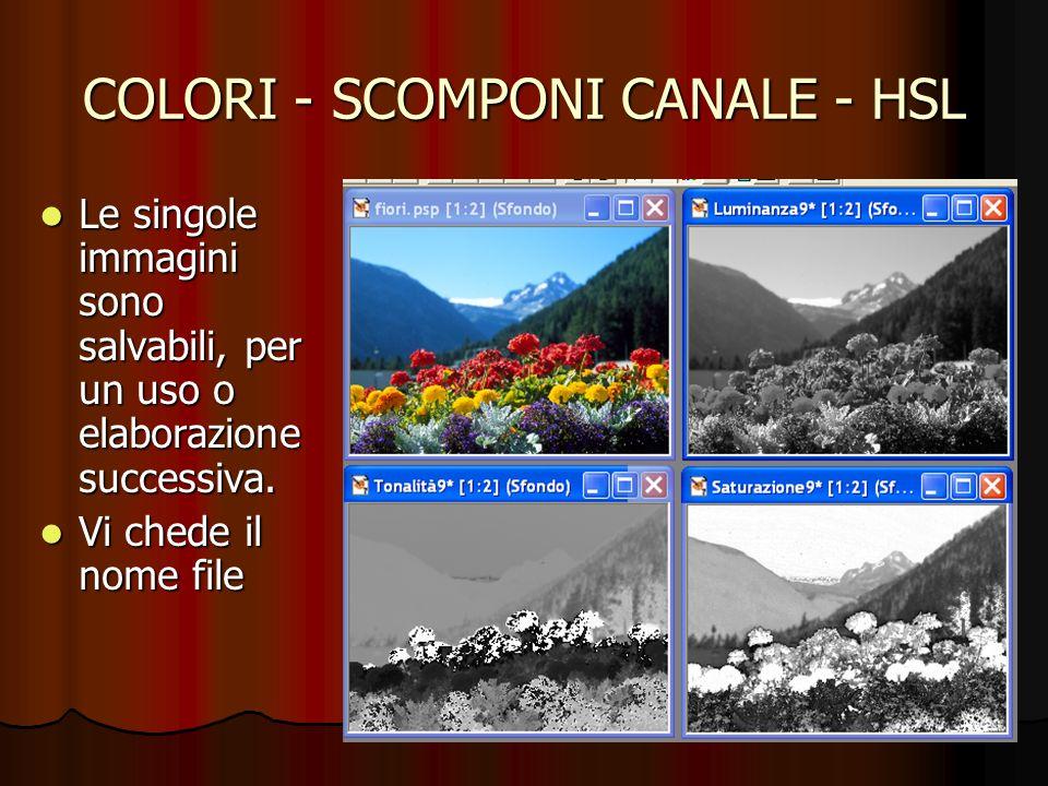 COLORI - SCOMPONI CANALE - HSL Le singole immagini sono salvabili, per un uso o elaborazione successiva. Le singole immagini sono salvabili, per un us