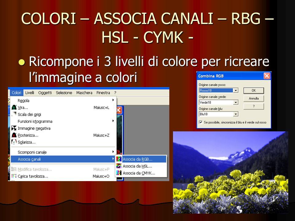 COLORI – ASSOCIA CANALI – RBG – HSL - CYMK - Ricompone i 3 livelli di colore per ricreare limmagine a colori Ricompone i 3 livelli di colore per ricre