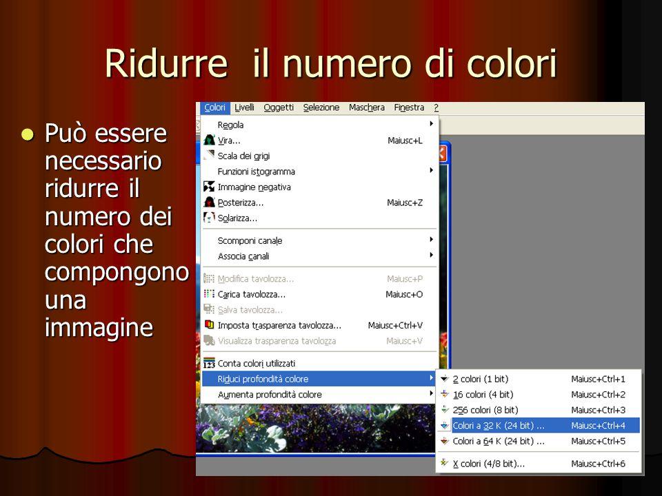 Ridurre il numero di colori Può essere necessario ridurre il numero dei colori che compongono una immagine Può essere necessario ridurre il numero dei