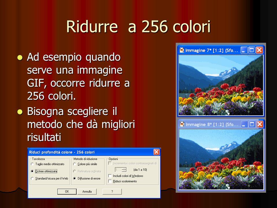 Ridurre a 256 colori Ad esempio quando serve una immagine GIF, occorre ridurre a 256 colori. Ad esempio quando serve una immagine GIF, occorre ridurre