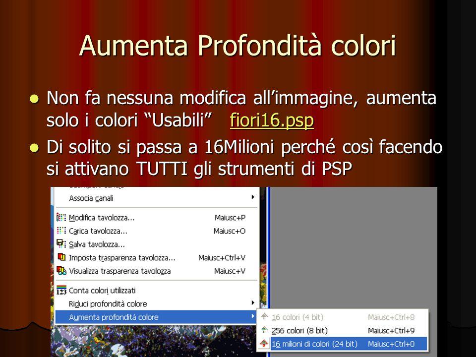 Aumenta Profondità colori Non fa nessuna modifica allimmagine, aumenta solo i colori Usabili fiori16.psp Non fa nessuna modifica allimmagine, aumenta