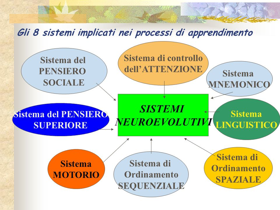 Gli 8 sistemi implicati nei processi di apprendimento Sistema del PENSIERO SOCIALE Sistema del PENSIERO SUPERIORE Sistema MOTORIO SISTEMI NEUROEVOLUTI