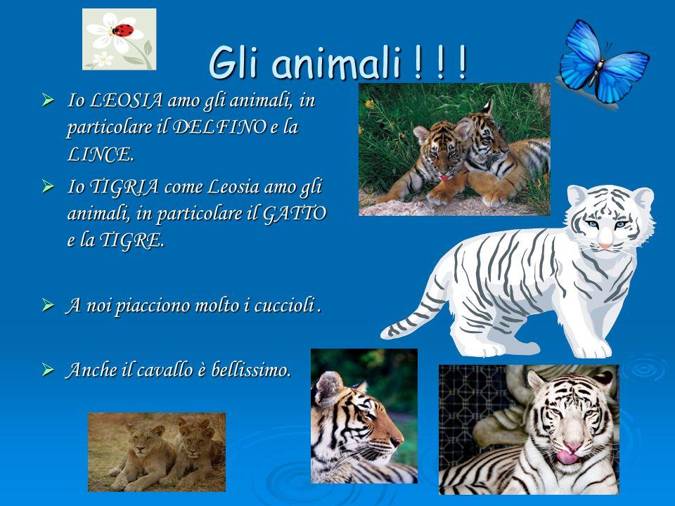 Gli animali ! ! ! Io LEOSIA amo gli animali, in particolare il DELFINO e la LINCE. Io LEOSIA amo gli animali, in particolare il DELFINO e la LINCE. Io