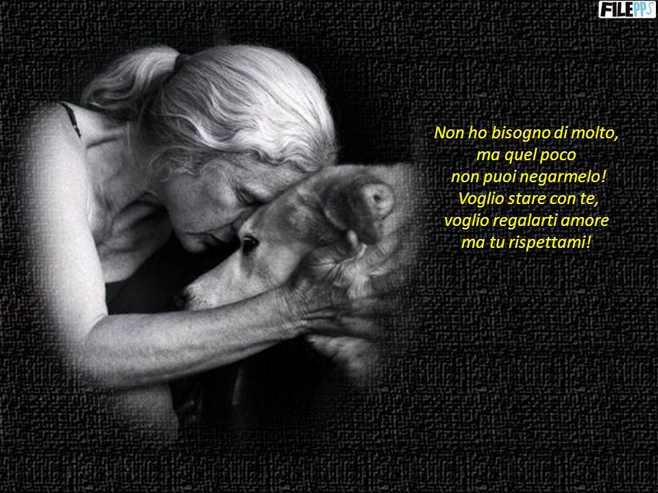 Adoro i tuoi cuccioli ma devi insegnarci ad amare nel modo corretto.