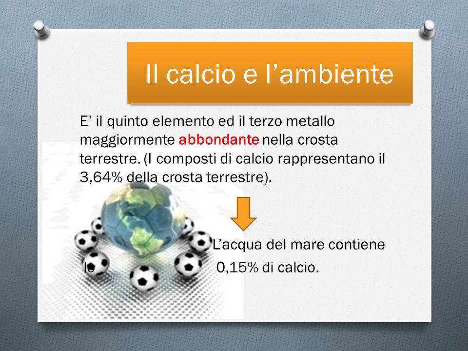 Il calcio e lambiente E il quinto elemento ed il terzo metallo maggiormente abbondante nella crosta terrestre.