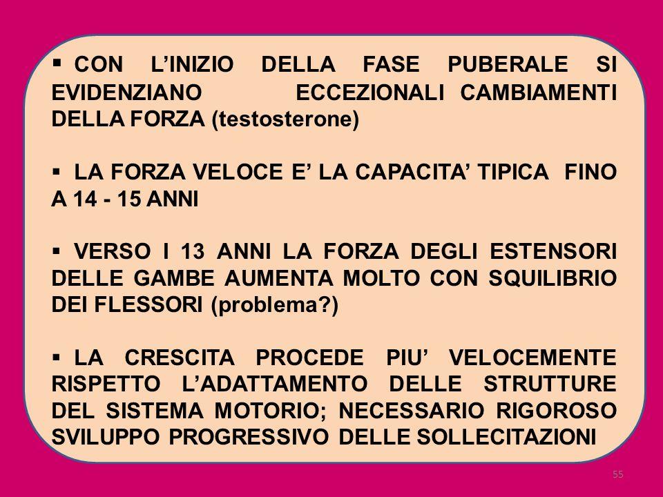 55 CON LINIZIO DELLA FASE PUBERALE SI EVIDENZIANO ECCEZIONALI CAMBIAMENTI DELLA FORZA (testosterone) LA FORZA VELOCE E LA CAPACITA TIPICA FINO A 14 -