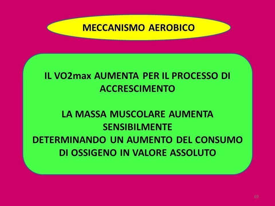69 MECCANISMO AEROBICO IL VO2max AUMENTA PER IL PROCESSO DI ACCRESCIMENTO LA MASSA MUSCOLARE AUMENTA SENSIBILMENTE DETERMINANDO UN AUMENTO DEL CONSUMO