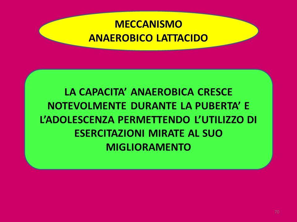 70 MECCANISMO ANAEROBICO LATTACIDO LA CAPACITA ANAEROBICA CRESCE NOTEVOLMENTE DURANTE LA PUBERTA E LADOLESCENZA PERMETTENDO LUTILIZZO DI ESERCITAZIONI