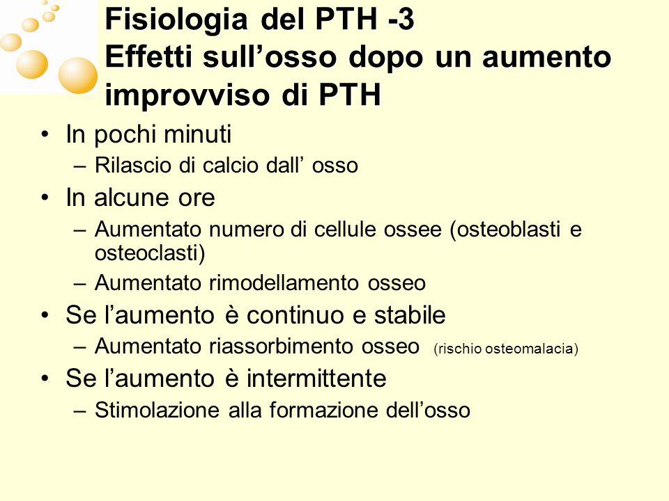 Fisiologia del PTH – 4 Metabolismo del PTH La proteolisi del PTH si verifica nel fegato e nel rene La demolizione del PTH è un processo di grande capacità
