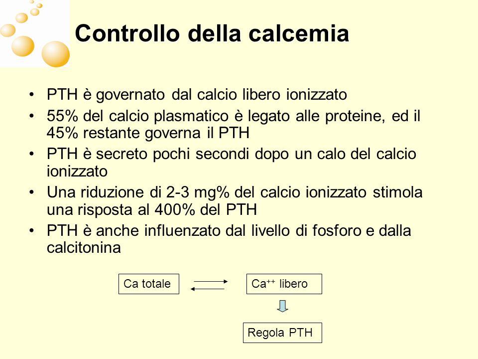 Effetti di PTH sulla struttura ossea La somministrazione a scopo terapeutico di piccole dose di PTH porta a Aumento della componente trabecolare Miglioramento della componente trabecolare Gli studi nelluomo con PTH dimostrano Aumento dello spessore corticale Nessun aumento della porosità corticale