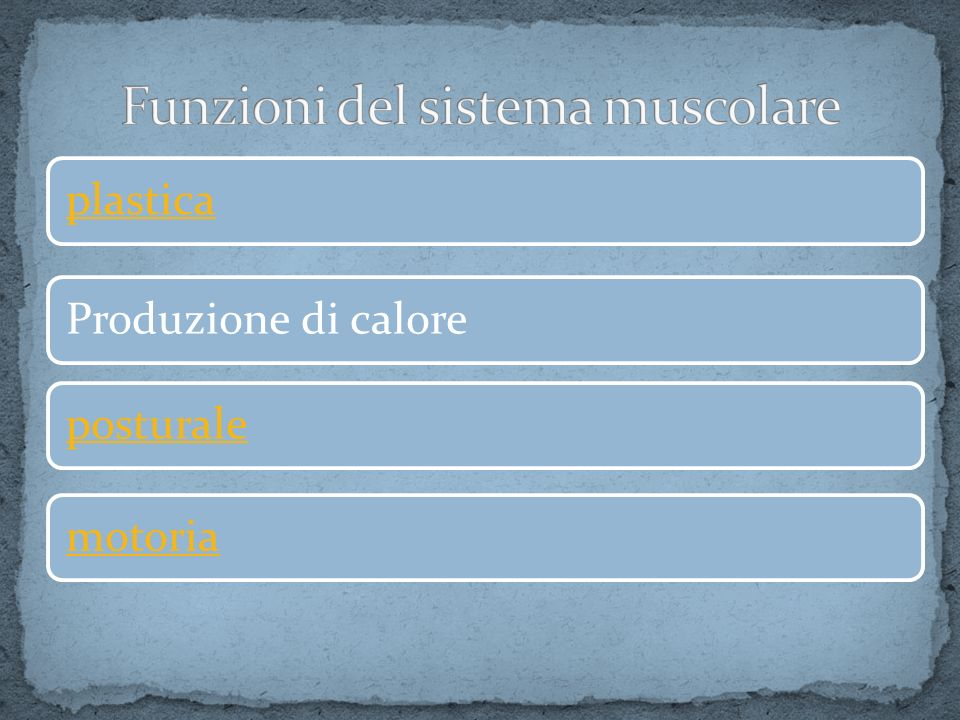 Come già si è visto nella slide precedente, la miofibrilla è formata da una successione d i sarcomeri uniti dalle linee Z.