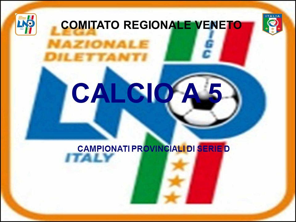 COMITATO REGIONALE VENETO CALCIO A 5 CAMPIONATI PROVINCIALI DI SERIE D