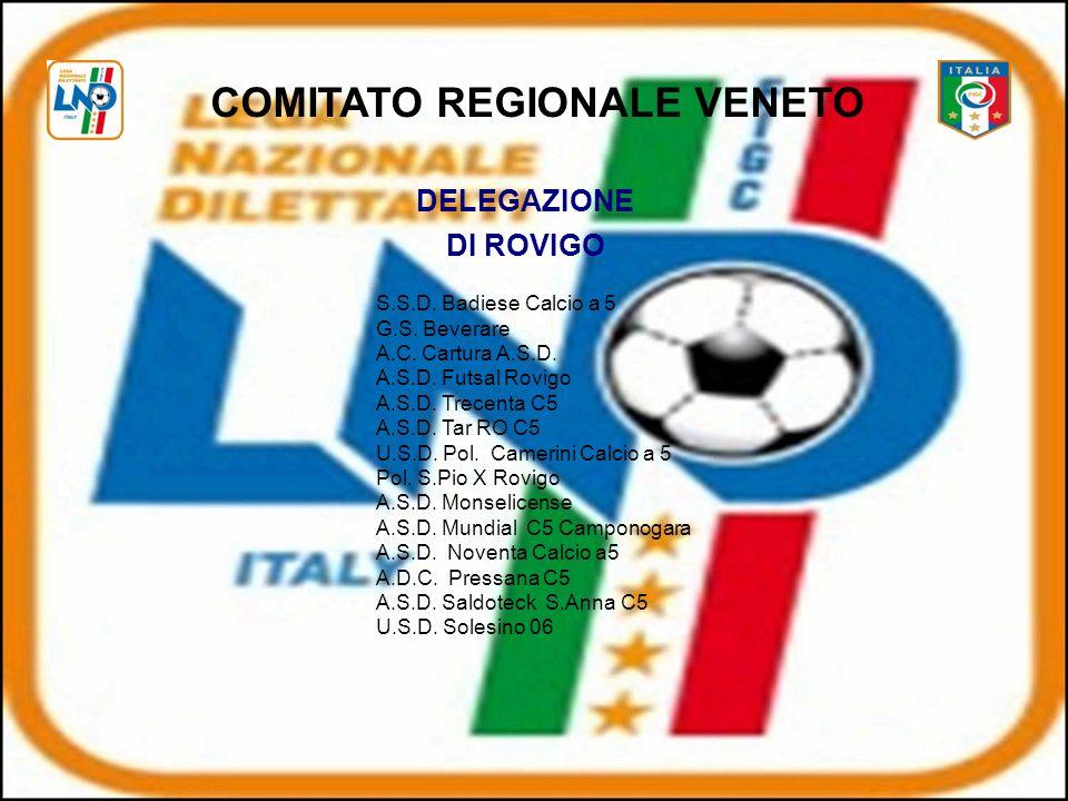 DELEGAZIONE DI ROVIGO S.S.D.Badiese Calcio a 5 G.S.