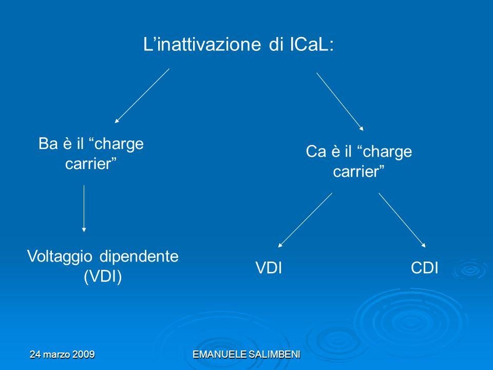 24 marzo 2009EMANUELE SALIMBENI Nel secondo caso del Ca charge carrier si è dedotto, da esperimenti biofisici, che: Nel caso CDI, Ca interagisce con la Calmodulina, legata al terminale-C del canale di I CaL; Nel caso VDI questo non accade; Cosa comporta?