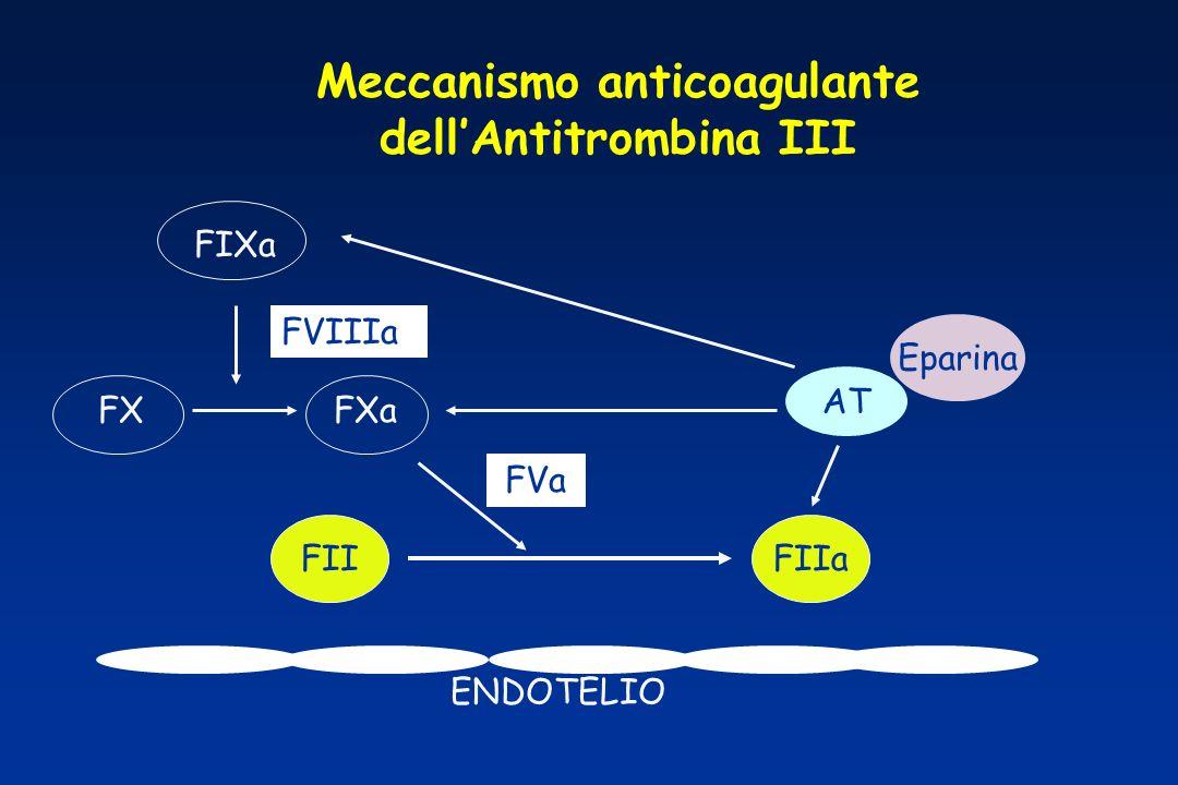 Meccanismo anticoagulante dellAntitrombina III ENDOTELIO Eparina FIIaFII FVa FIXa FXaFX AT FVIIIa