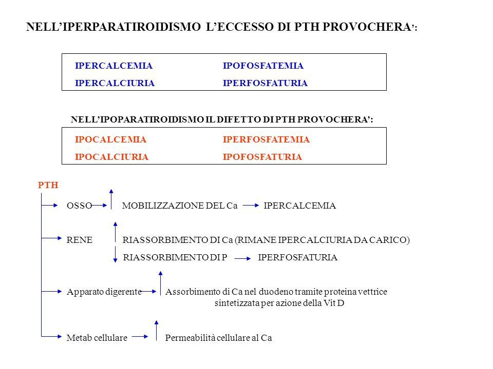 NELLIPERPARATIROIDISMO LECCESSO DI PTH PROVOCHERA : IPERCALCEMIAIPOFOSFATEMIA IPERCALCIURIAIPERFOSFATURIA NELLIPOPARATIROIDISMO IL DIFETTO DI PTH PROV