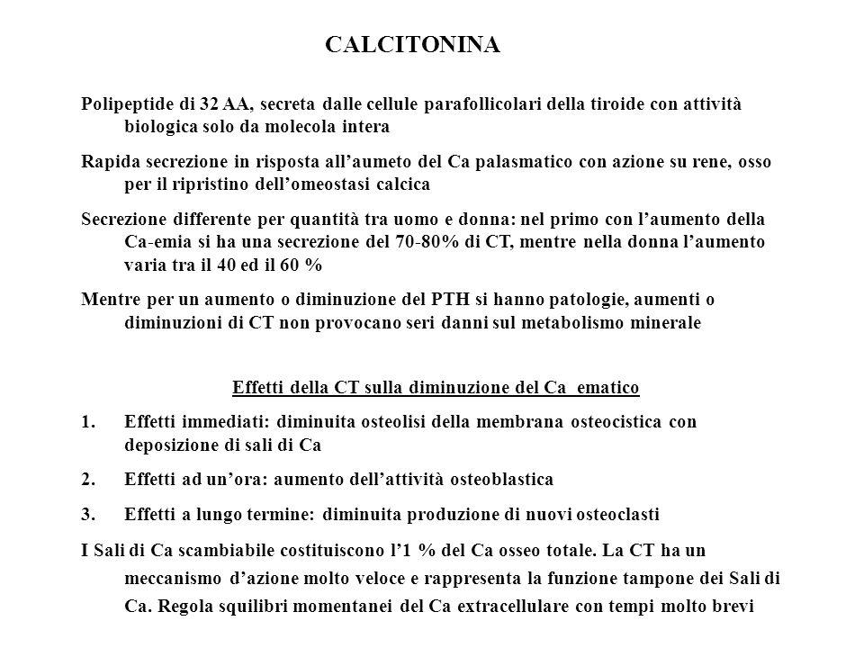 CALCITONINA Polipeptide di 32 AA, secreta dalle cellule parafollicolari della tiroide con attività biologica solo da molecola intera Rapida secrezione