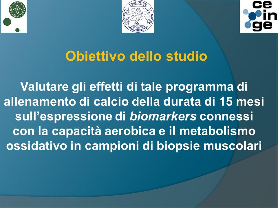 Obiettivo dello studio Valutare gli effetti di tale programma di allenamento di calcio della durata di 15 mesi sullespressione di biomarkers connessi con la capacità aerobica e il metabolismo ossidativo in campioni di biopsie muscolari