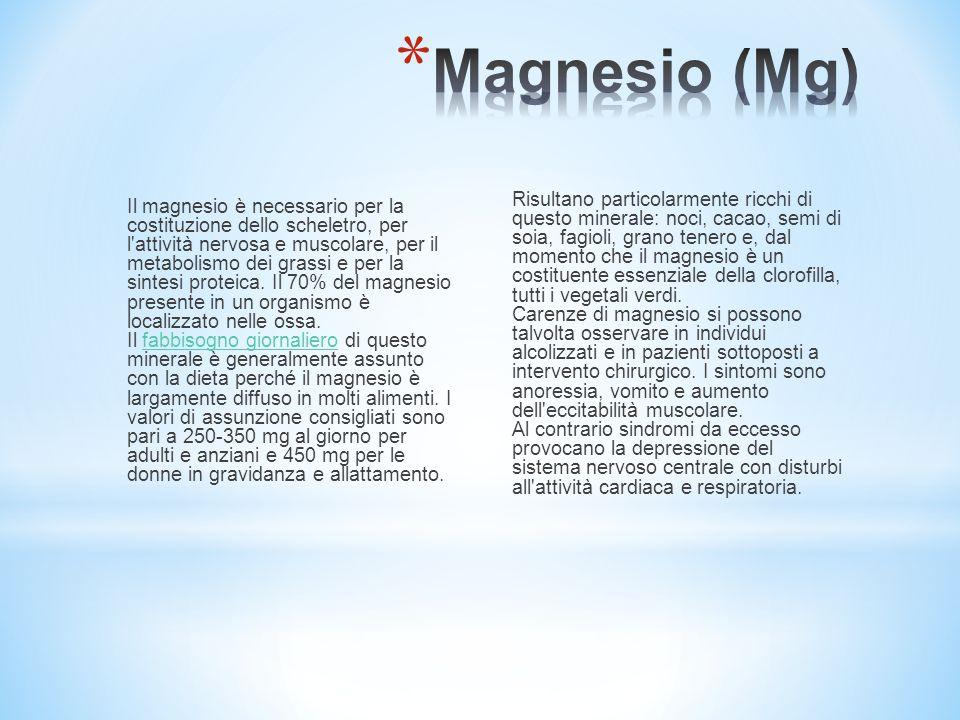 Il magnesio è necessario per la costituzione dello scheletro, per l'attività nervosa e muscolare, per il metabolismo dei grassi e per la sintesi prote