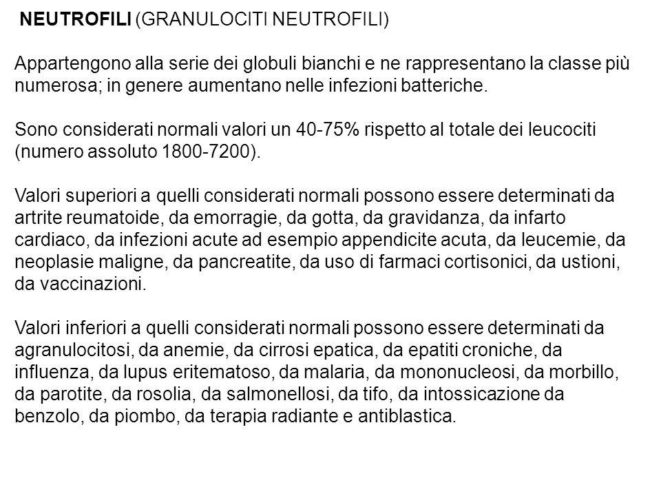 NEUTROFILI (GRANULOCITI NEUTROFILI) Appartengono alla serie dei globuli bianchi e ne rappresentano la classe più numerosa; in genere aumentano nelle infezioni batteriche.
