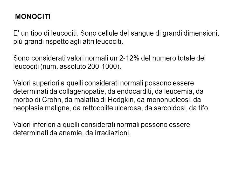 MONOCITI E un tipo di leucociti.