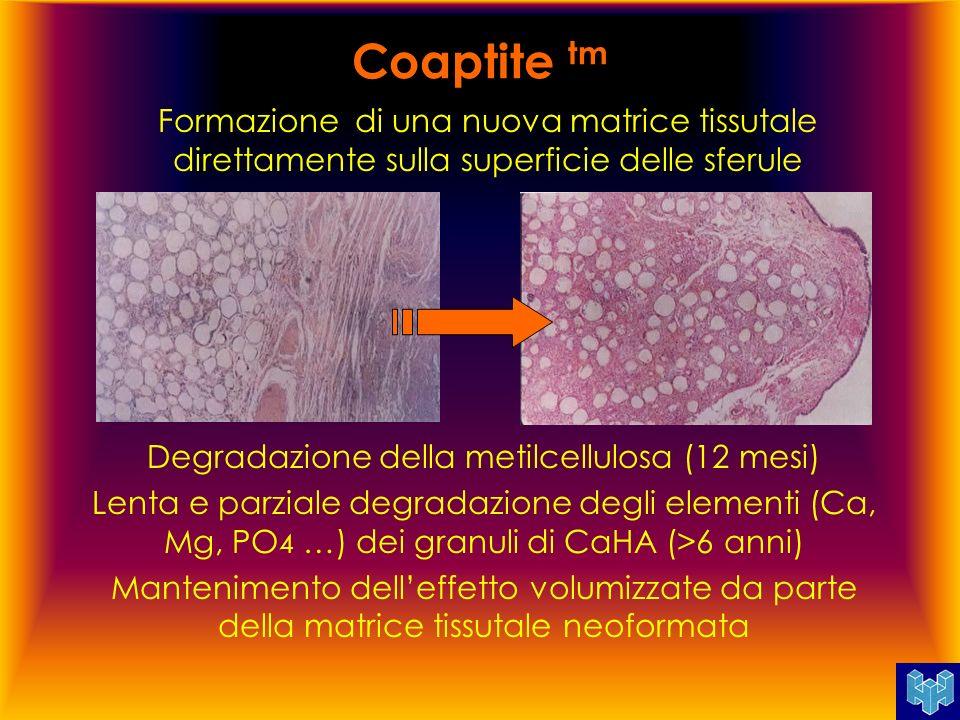 Coaptite tm Formazione di una nuova matrice tissutale direttamente sulla superficie delle sferule Degradazione della metilcellulosa (12 mesi) Lenta e