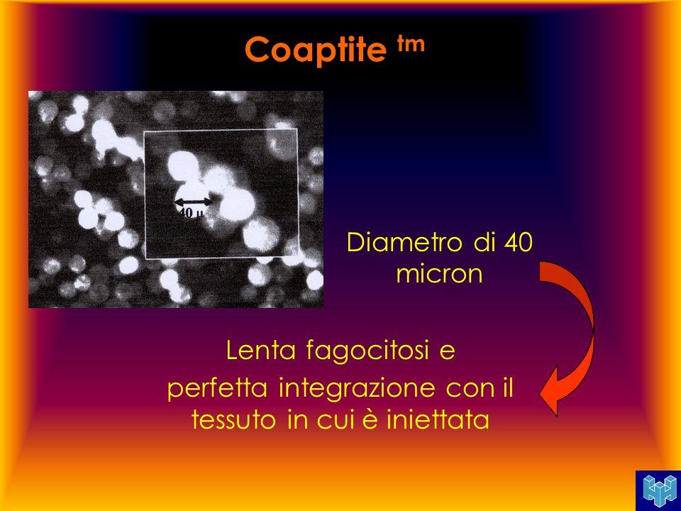 Coaptite tm Diametro di 40 micron Lenta fagocitosi e perfetta integrazione con il tessuto in cui è iniettata