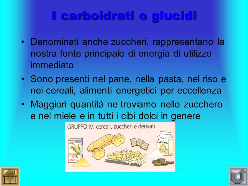 Ho bisogno di… I principi nutritivi Carboidrati Grassi Proteine Vitamine Sali minerali Acqua