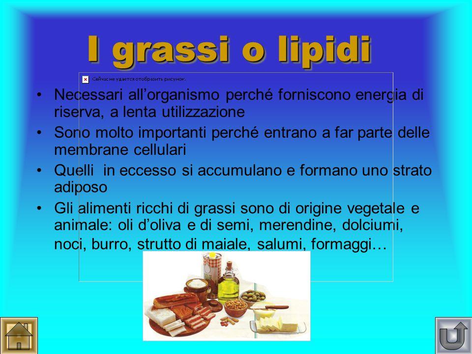 I carboidrati o glucidi Denominati anche zuccheri, rappresentano la nostra fonte principale di energia di utilizzo immediato Sono presenti nel pane, n