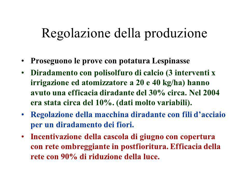 Regolazione della produzione Proseguono le prove con potatura Lespinasse Diradamento con polisolfuro di calcio (3 interventi x irrigazione ed atomizzatore a 20 e 40 kg/ha) hanno avuto una efficacia diradante del 30% circa.