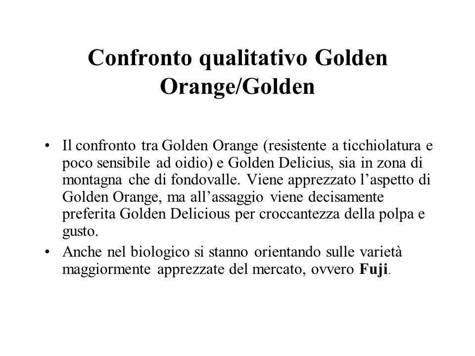 Confronto qualitativo Golden Orange/Golden Il confronto tra Golden Orange (resistente a ticchiolatura e poco sensibile ad oidio) e Golden Delicius, sia in zona di montagna che di fondovalle.