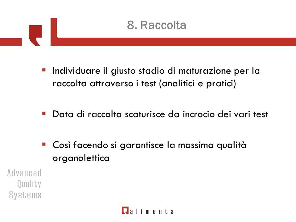 8. Raccolta Individuare il giusto stadio di maturazione per la raccolta attraverso i test (analitici e pratici) Data di raccolta scaturisce da incroci
