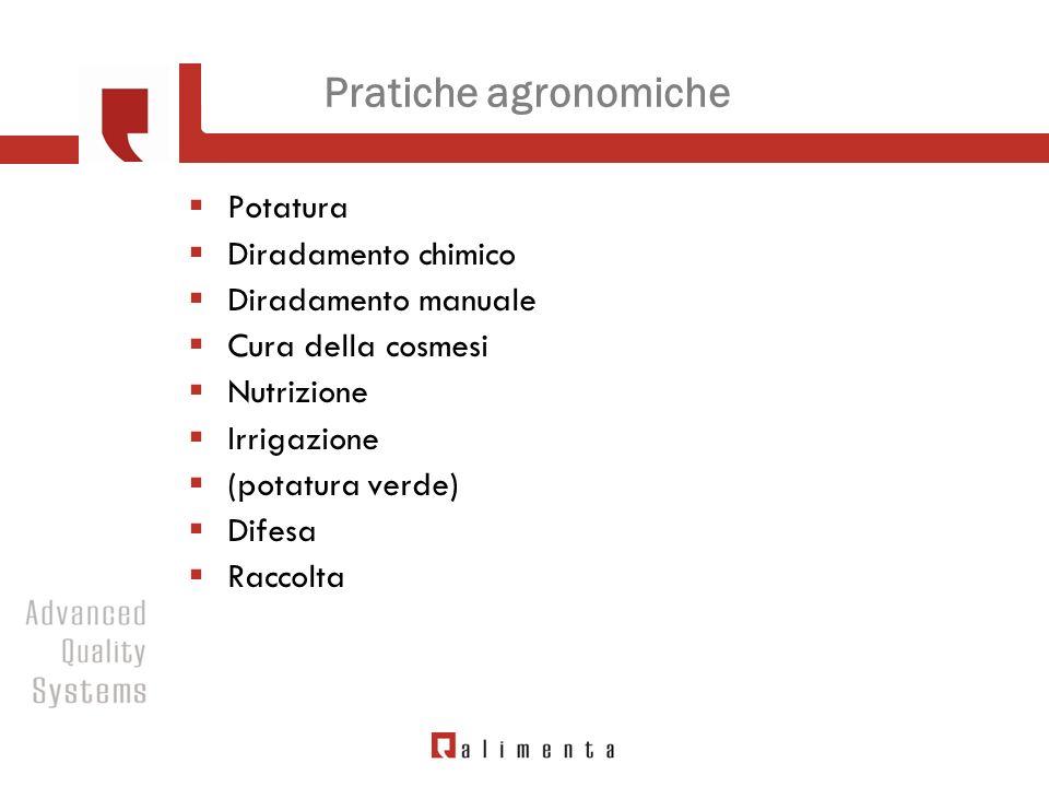Pratiche agronomiche Potatura Diradamento chimico Diradamento manuale Cura della cosmesi Nutrizione Irrigazione (potatura verde) Difesa Raccolta