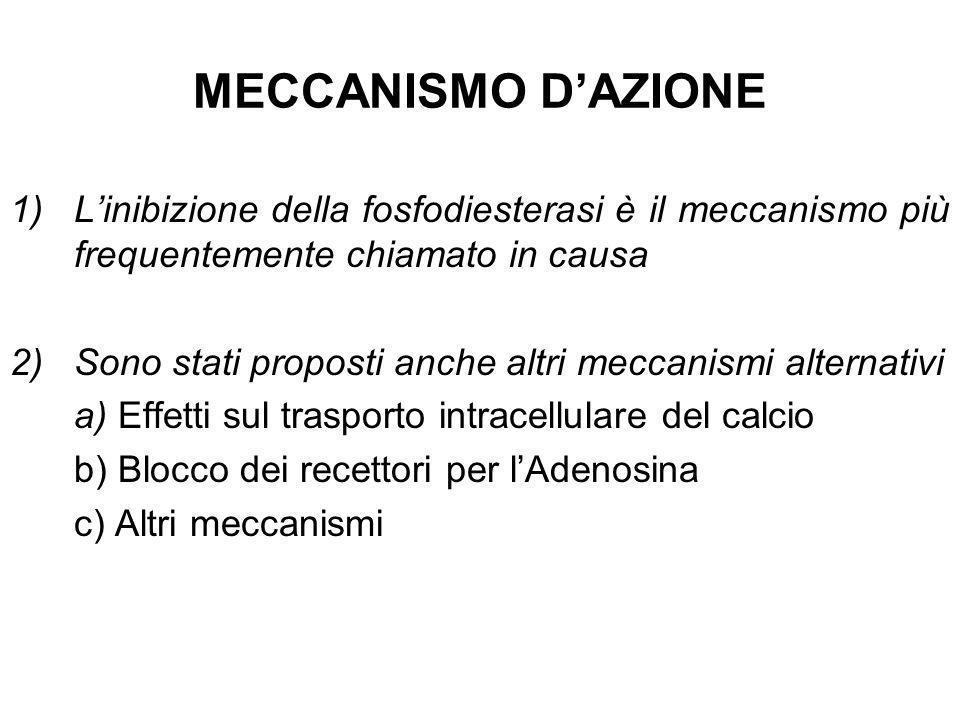 MECCANISMO DAZIONE 1)Linibizione della fosfodiesterasi è il meccanismo più frequentemente chiamato in causa 2)Sono stati proposti anche altri meccanis