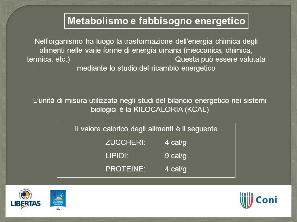 Metabolismo e fabbisogno energetico Nellorganismo ha luogo la trasformazione dellenergia chimica degli alimenti nelle varie forme di energia umana (me