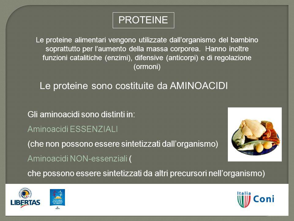 PROTEINE Le proteine alimentari vengono utilizzate dallorganismo del bambino soprattutto per laumento della massa corporea. Hanno inoltre funzioni cat