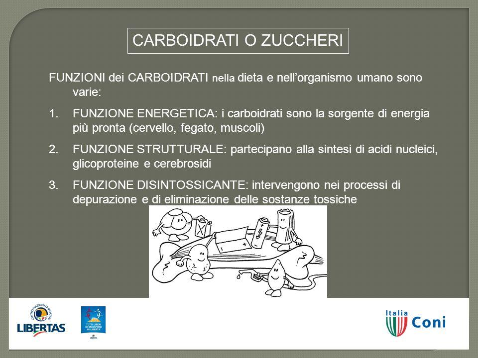 CARBOIDRATI O ZUCCHERI FUNZIONI dei CARBOIDRATI nella dieta e nellorganismo umano sono varie: 1.FUNZIONE ENERGETICA: i carboidrati sono la sorgente di