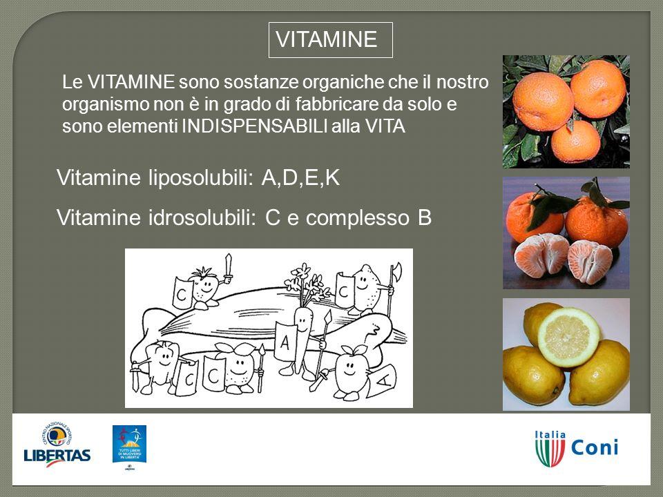 Le VITAMINE sono sostanze organiche che il nostro organismo non è in grado di fabbricare da solo e sono elementi INDISPENSABILI alla VITA Vitamine lip
