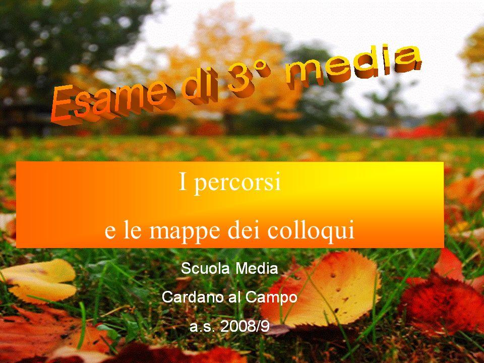 Camilla M. Scuola secondaria di 1° Anno scolastico 2008/2009 Classe 3C