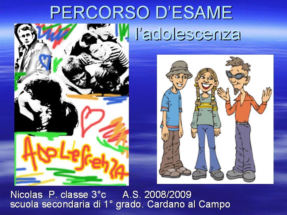 Percorso d esame Andrea S. Classe III C anno scolastico 2008-2009