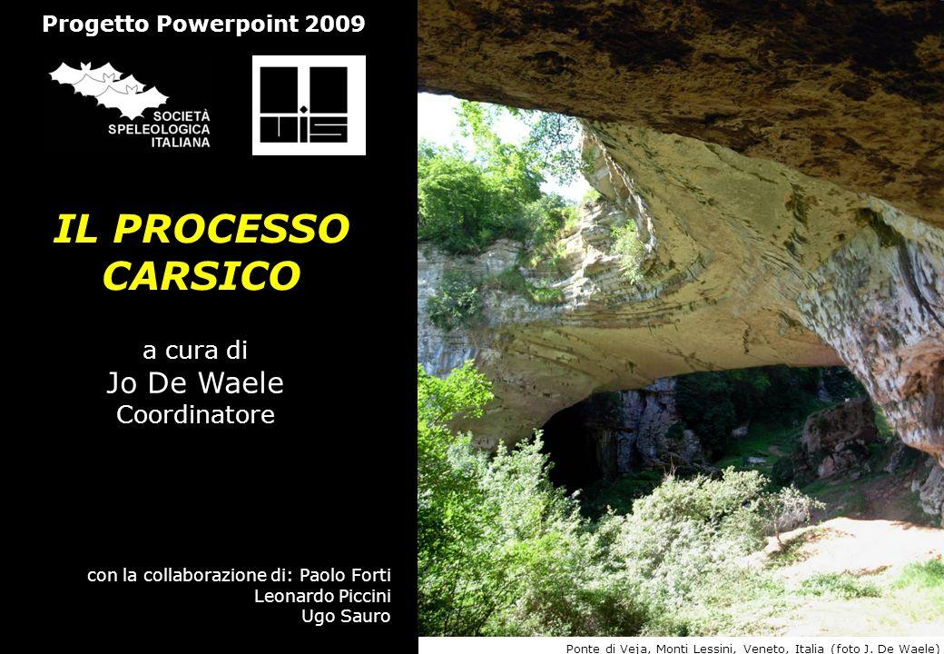 IL PROCESSO CARSICO a cura di Jo De Waele Coordinatore con la collaborazione di: Paolo Forti Leonardo Piccini Ugo Sauro Progetto Powerpoint 2009 Ponte