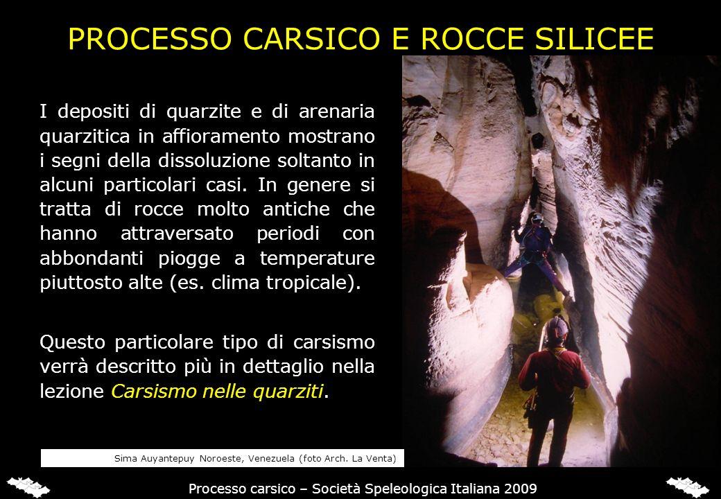 PROCESSO CARSICO E ROCCE SILICEE I depositi di quarzite e di arenaria quarzitica in affioramento mostrano i segni della dissoluzione soltanto in alcun