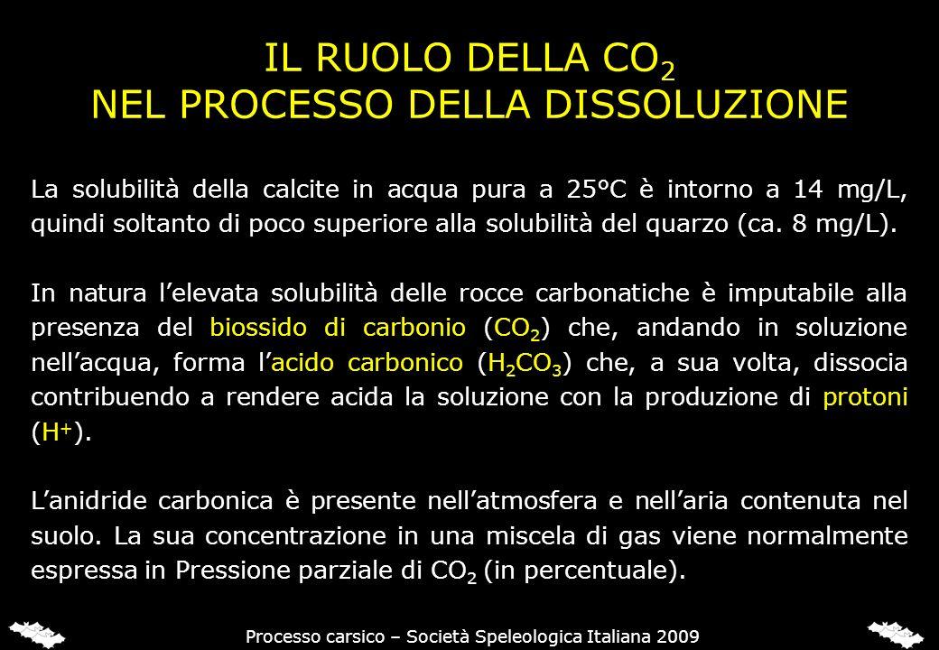 IL RUOLO DELLA CO 2 NEL PROCESSO DELLA DISSOLUZIONE La solubilità della calcite in acqua pura a 25°C è intorno a 14 mg/L, quindi soltanto di poco supe